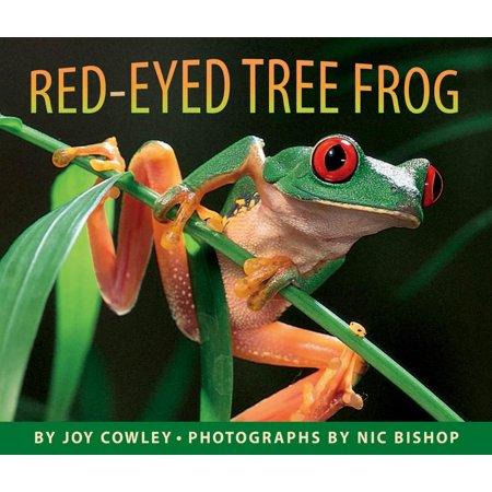 Red-Eyed Tree Frog (Hardcover) Red Tree Frog