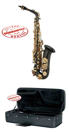 Hawk Colored Student Black Alto Saxophone with Case, Mouthpiece and Reed by Hawk
