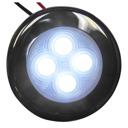 - Aqua Signal Bogota 12V 4-LED Accent Light for Indoor or Outdoor Use, Stainless Steel Housing