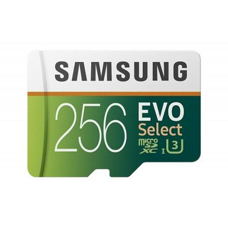 Samsung Evo 256GB MicroSD Memory Card High Speed Micro-SDXC Compatible With Alcatel Onyx - LG V50 ThinQ 5G, G8 ThinQ - Motorola Moto G7 Power Play - Nokia 3.1 Plus - Samsung Galaxy S10e (Samsung Galaxy Express 3 Sd Card Not Working)