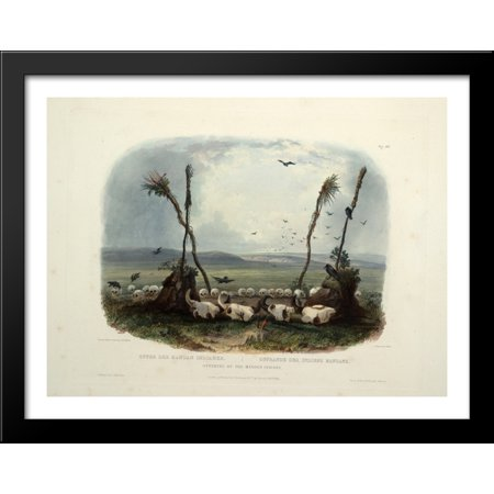 Offering Of The Mandan Indians  Plate 14 From Volume 1 Of Travels In The Interior Of North America 36X28 Large Black Wood Framed Print Art By Karl Bodmer