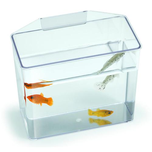 Lees Aquarium & Pet Aquarium Specimen Container Tank
