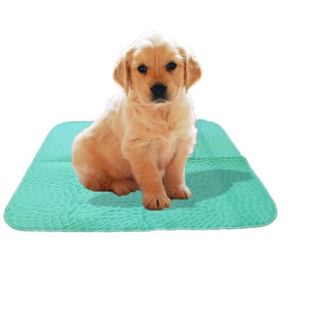 "Deluxe 2pk Waterproof Reusable Washable Large Dog Puppy Pet Training Travel Pee Pads, 34"" x covid 19 (Large Pet Pad coronavirus)"