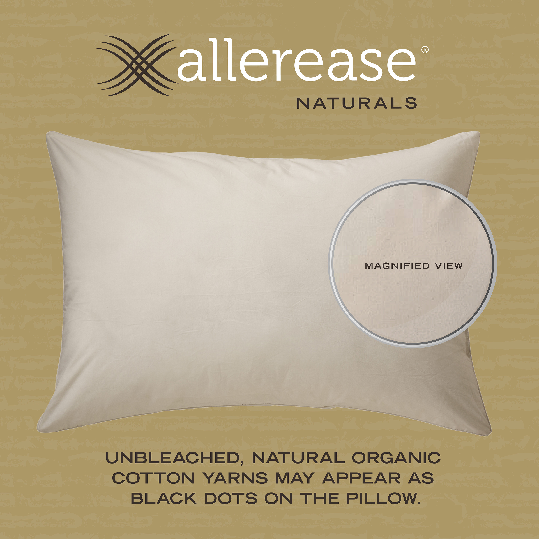 kapok organics organic pillows pillow wool sachi products cotton