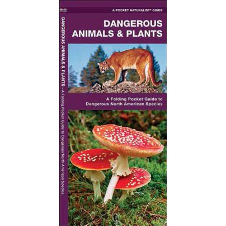 Plant Species - Pocket Naturalist Guides: Dangerous Animals & Plants: A Folding Pocket Guide to Dangerous North American Species (Paperback)
