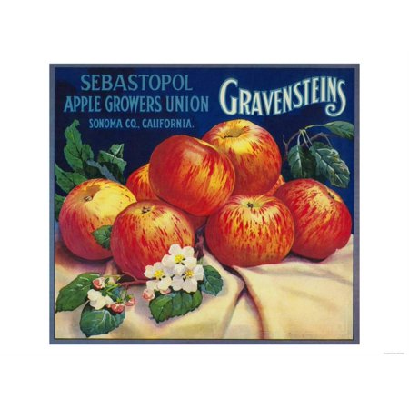 Art Apple (Sebastopol Gravensteins Apple Label - Sonoma, CA Print Wall Art By Lantern Press )