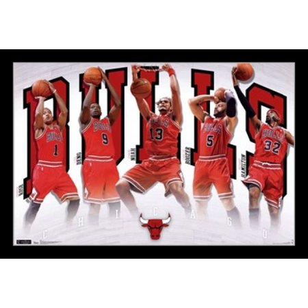 - Chicago Bulls - Team 2011 Poster Print