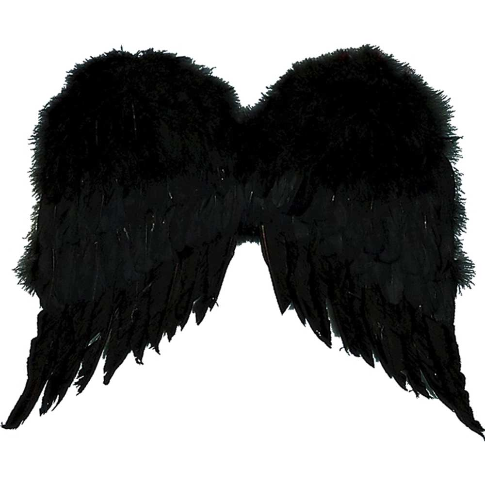 Black 36 Feather Wings Halloween Costume Accessory