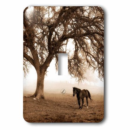 3dRose Western Sepia Toned Horse on a Ranch with an Oak Tree, Single Toggle Switch Oak Tree Ranch