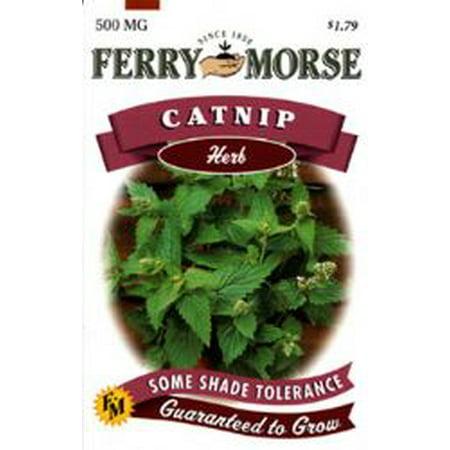 Image of Ferry Morse Fm Foil Catnip