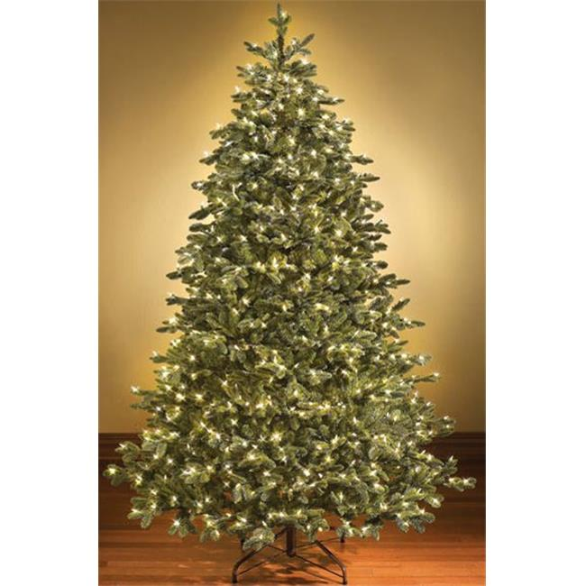 Queens of Christmas WL-TRSQ-14-LWW 14 ft. Pre Lit LED Warm White Sequoia Tree