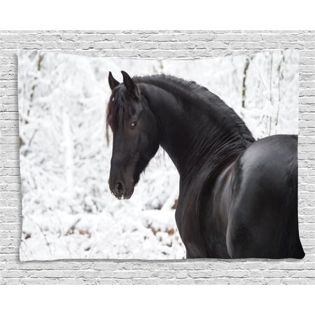 Equestrian Decor Tapestry, Black Friesian Sport Horse Portrait on Snowy Winter Background Novelty Picture, Wall Hanging for Bedroom Living Room Dorm Decor, 60W X 40L Inches, White, by Ambesonne (Bedrooms Black And White Pictures)