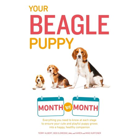 Your Beagle Puppy Month by Month : Everything You Need to Know at Each State to Ensure Your Cute and Playful Puppy