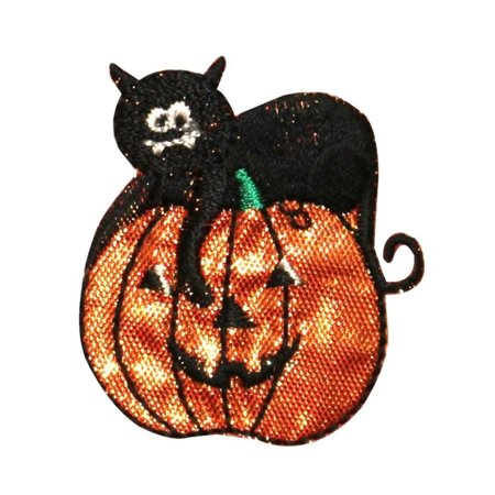 ID 0819 Black Cat & Pumpkin Patch Halloween Scary Embroidered Iron On Applique](Scary Halloween Pumpkins Patterns)