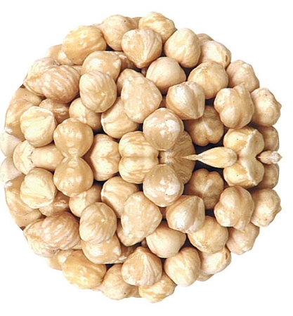 Raw Blanched Filbert Hazelnuts, (11 Pounds) by
