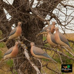 AVERY OUTDOORS GREENHEAD GEAR GHG MOURNING DOVE DECOYS - 6 PACK