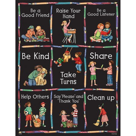 SW MANNERS CHART - Science Classroom Supplies