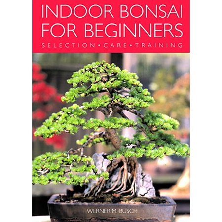 Indoor Bonsai for Beginners : Selection - Care -