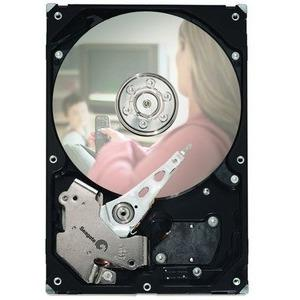 250GB SATA 7.2K RPM 8MB 3.5IN DISC PROD SPCL SOURCING SEE NOTES