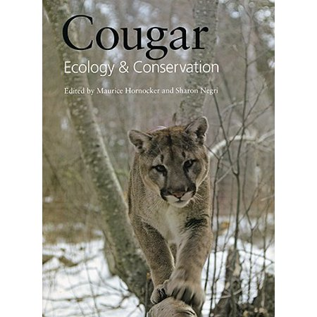 Cougar - Cougar : Ecology and Conservation