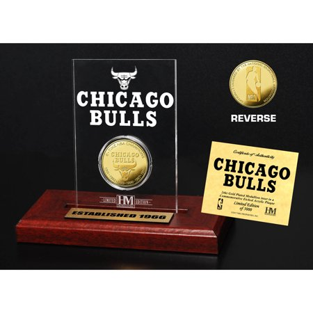 Chicago Coin (Chicago Bulls Highland Mint 3.5
