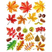 AkoaDa Fall Leaves Window Clings Thanksgiving Maple Decorations Wall Stickers Home Room Decal