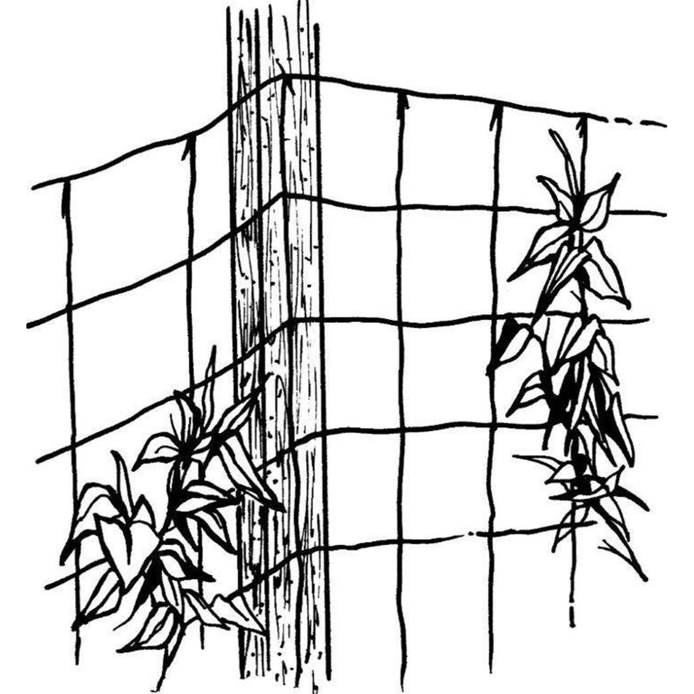 Luster leaf Vine and Veggie Trellis Net Rapclip 864 Green 5/'x10/' Garden Tools