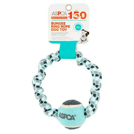 - ASPCA Bungee Ring Blue Rope Dog Toy