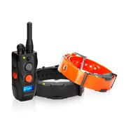 Dogtra ARC-2 Dogtra ARC Remote Trainer 2 Dog System