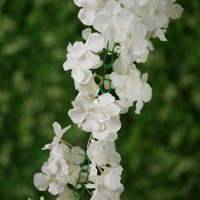 BalsaCircle 7 feet 3D Chain Garland with Silk Hydrangea Flowers - 1 garland - Wedding Arrangements Bouquets Centerpieces