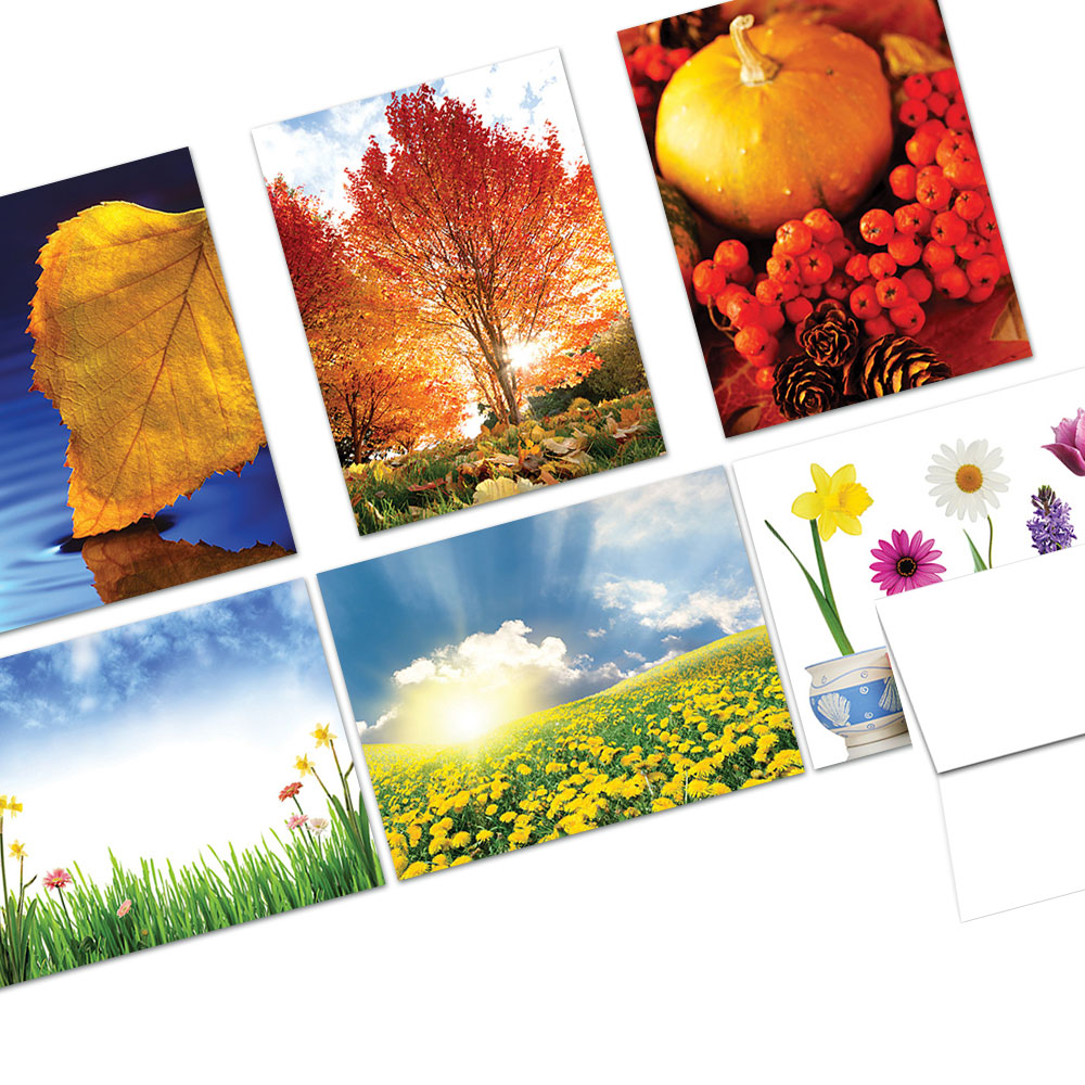 72 Note Cards  - Turning of the Seasons - 6 Designs  - Blank Cards - White Envelopes Included