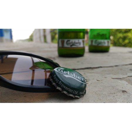 Aviator Bear - Framed Art for Your Wall Aviator Sunglasses Bear Sunglasses 10x13 Frame