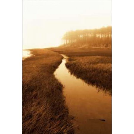 Harkers Island Marsh I Canvas Art - Alan Hausenflock (12 x 18)