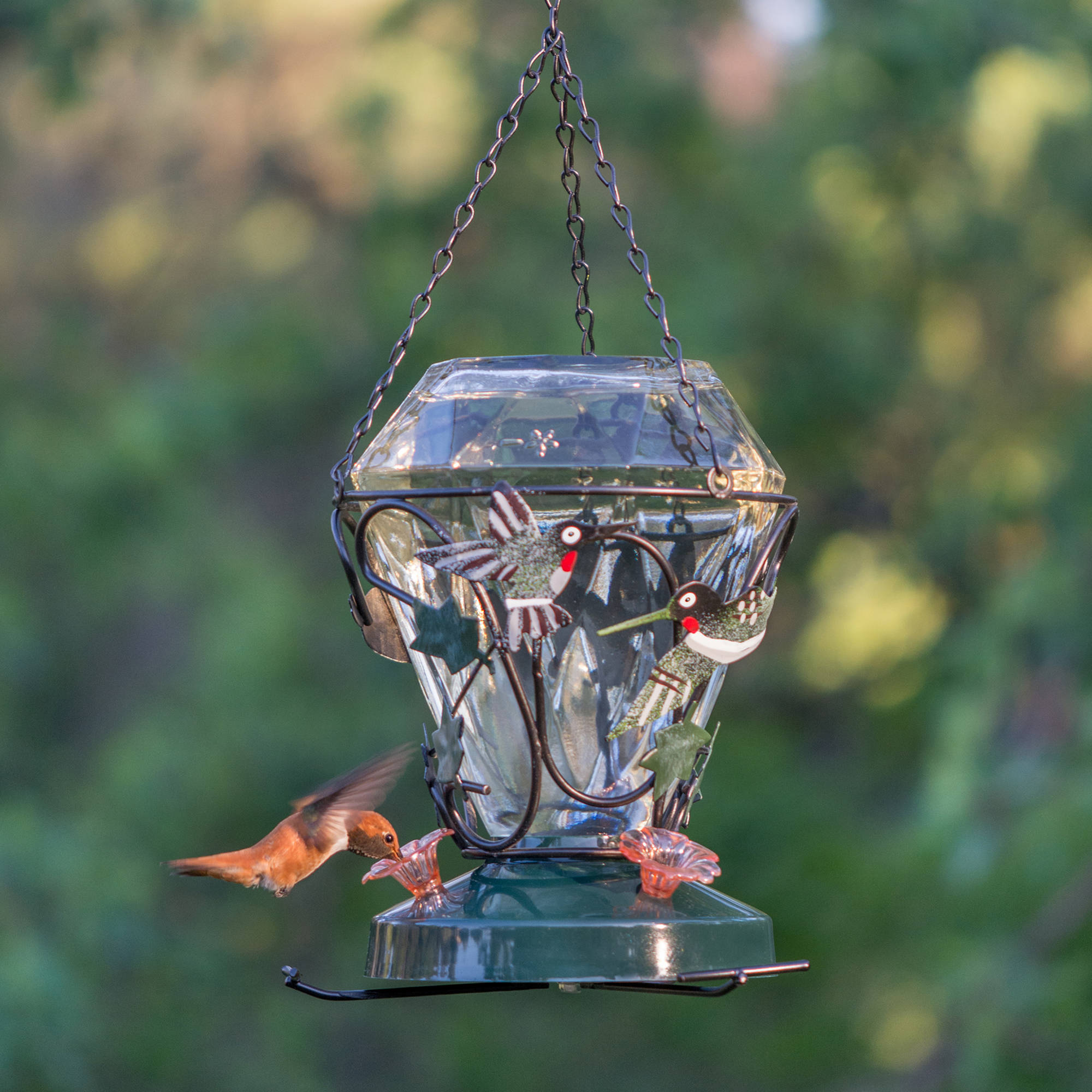 wren feeder decorative of feeders bird hummingbird mine days house these am tag
