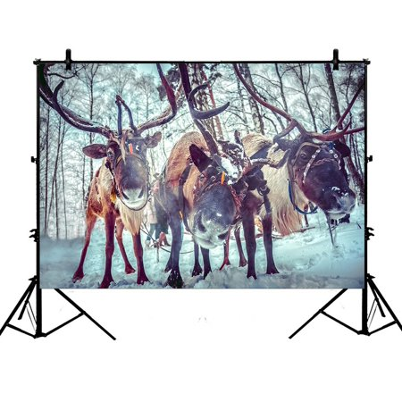 PHFZK 7x5ft Winter Pattern Christmas Reindeer Deers Photography Backdrops Polyester Photo Background Studio Props](Reindeer Props)
