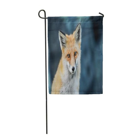 NUDECOR Beige Algonquin Red Fox Head Detail Eyes Brown Canada Garden Flag Decorative Flag House Banner 12x18 inch - image 1 of 1
