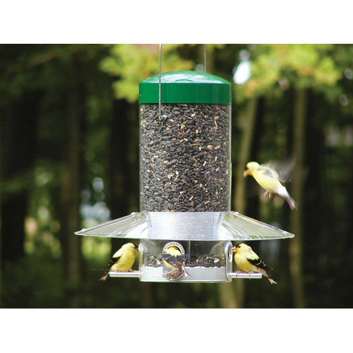 Birds Choice 13'' Hanging Bird Feeder