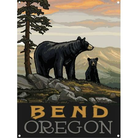 Bend Oregon Black Bear Family Metal Art Print by Paul A. Lanquist (9
