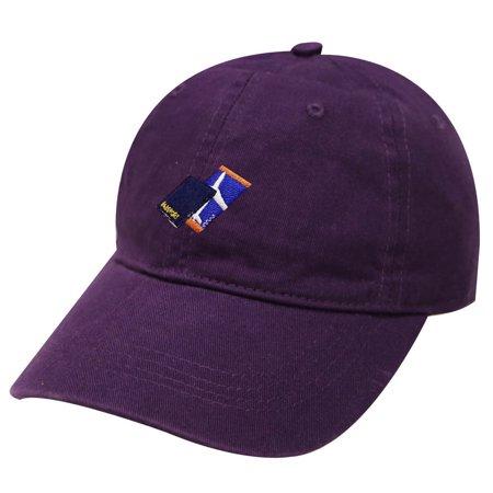 City Hunter C104 Passport with Flight Ticket Cotton Baseball Dad Cap 19 Colors (Purple)