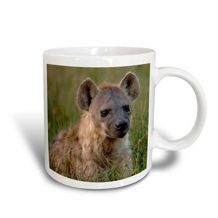 3dRose Spotted hyena, Chiefs Island, Okavango Delta. BOTSWANA-AF05 POX0259 - Pete Oxford, Ceramic Mug, 15-ounce
