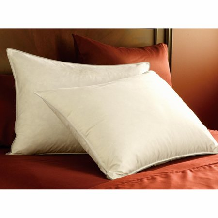 Pacific Coast Double Down Surround Pillow Set (2 Standard (Pacific Coast Double Down Surround Pillow Review)