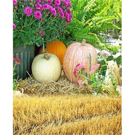 GreenDecor Polyster Nature Vintage Pumpkins Backdrop for Photography 5x7ft Background Photo Studio Props for Halloween Kids Photo Booth](Vintage Halloween Photo)