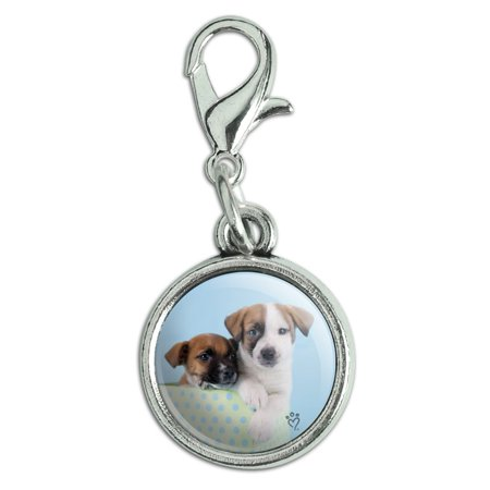 Jack Russell Terrier Puppies Dogs Gift Box Antiqued Bracelet Pendant Zipper Pull Charm with Lobster Clasp Pewter Dog Antique Charm