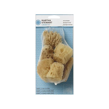 Martha Stewart Sea Sponge Cubes 6 Pkg
