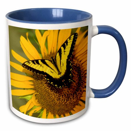 Lenox Butterfly Meadow Tiger Swallowtail (3dRose NJ, sunflower, tiger swallowtail butterfly - US31 AJN0003 - Alison Jones - Two Tone Blue Mug, 11-ounce)