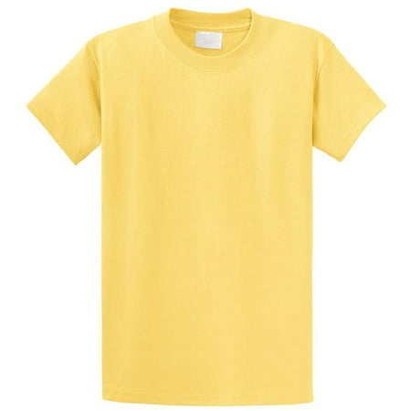 Regular Fit Youth Short Sleeves Cotton T-Shirt - Boys and Girls (7 yrs - 16 Yrs Old) Pack - Is Tweety Bird A Girl Or Boy