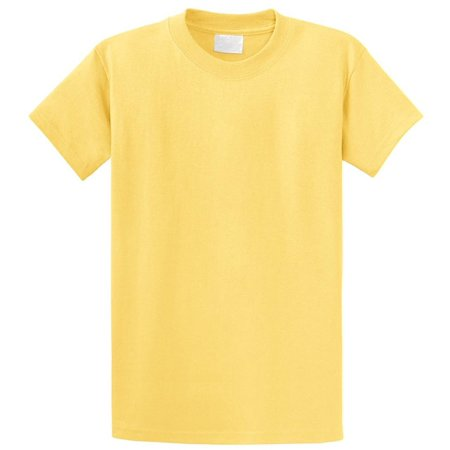 Regular Fit Youth Short Sleeves Cotton T-Shirt - Boys and Girls (7 yrs - 16 Yrs Old) Pack - 7 Year Old Boys