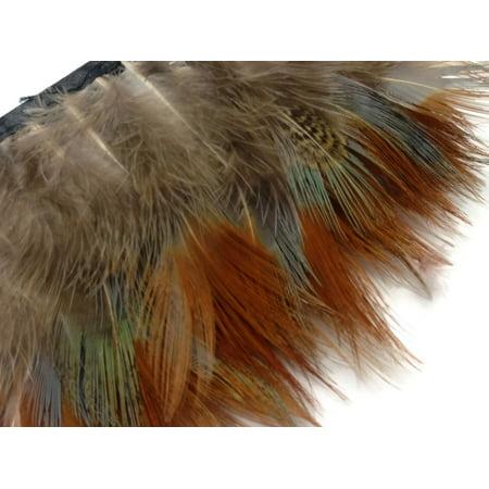 1 Yard - Yellow Ringneck Pheasant Plumage Feather Trim