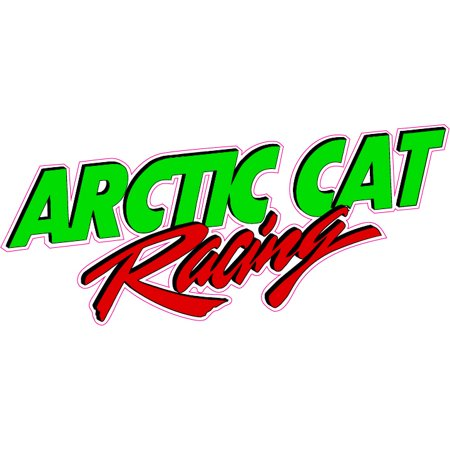 Arctic Cat Racing 6
