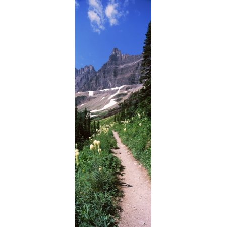 Hiking trail at US Glacier National Park Montana USA Canvas Art - Panoramic Images (18 x